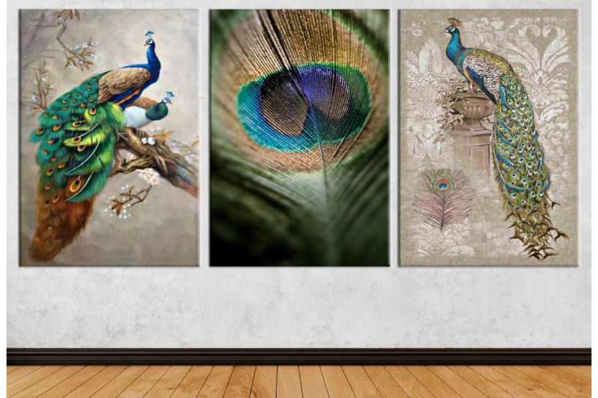 srdk72 - Tavus Kuşları ve Tüy Üçlü Kolaj Kanvas Tablo Seti
