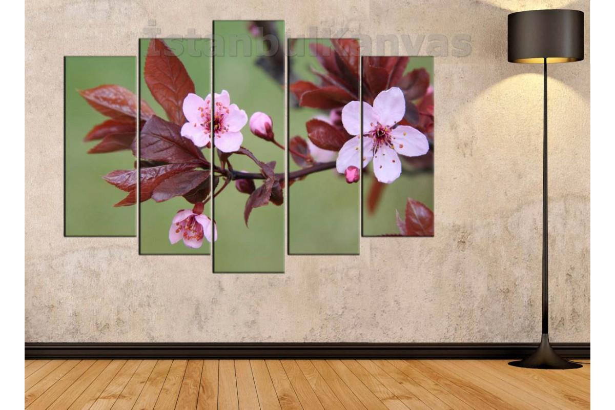 srfw7 - Dalında Açan Pembe Çiçekler Kanvas Tablo