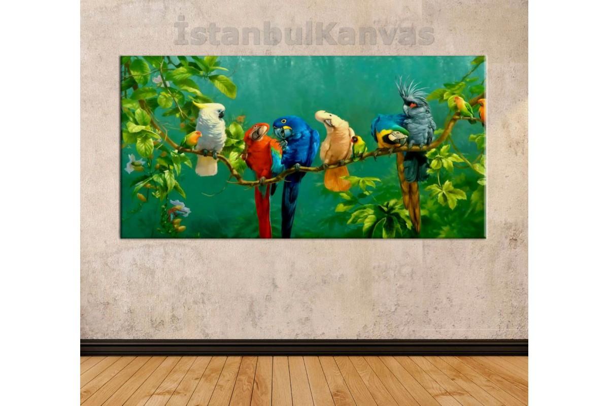 srks50 - Yağlı Boya Görünümlü Daldaki Rengarenk Tropikal Kuşlar Kanvas Duvar Tablosu
