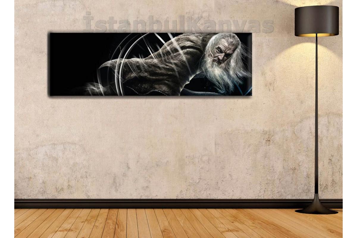 wsh25 - Gandalf - Yüzüklerin Efendisi - Lord of the Rings - LOTR kanvas tablo 80x25cm
