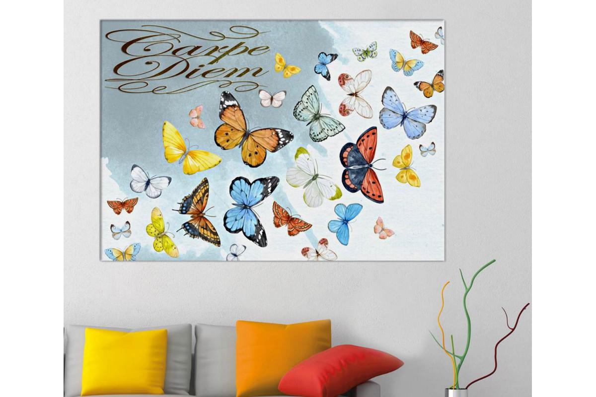 srcd1 - Carpe Diem, Anı Yaşa, Renkli Uçan Kelebekler Kanvas Tablo