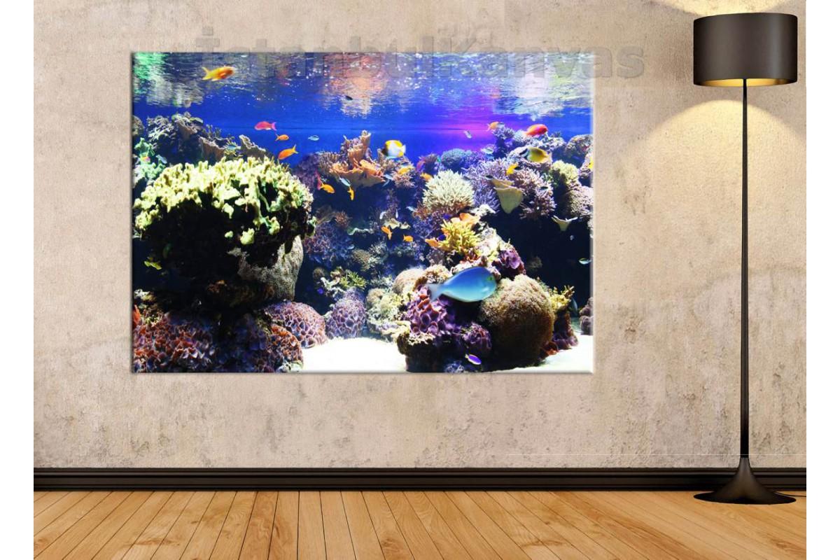 Srk450 - Tuzlu Su Akvaryumu, Mercan Resifleri Ve Akvaryum Balıkları Kanvas Tablo