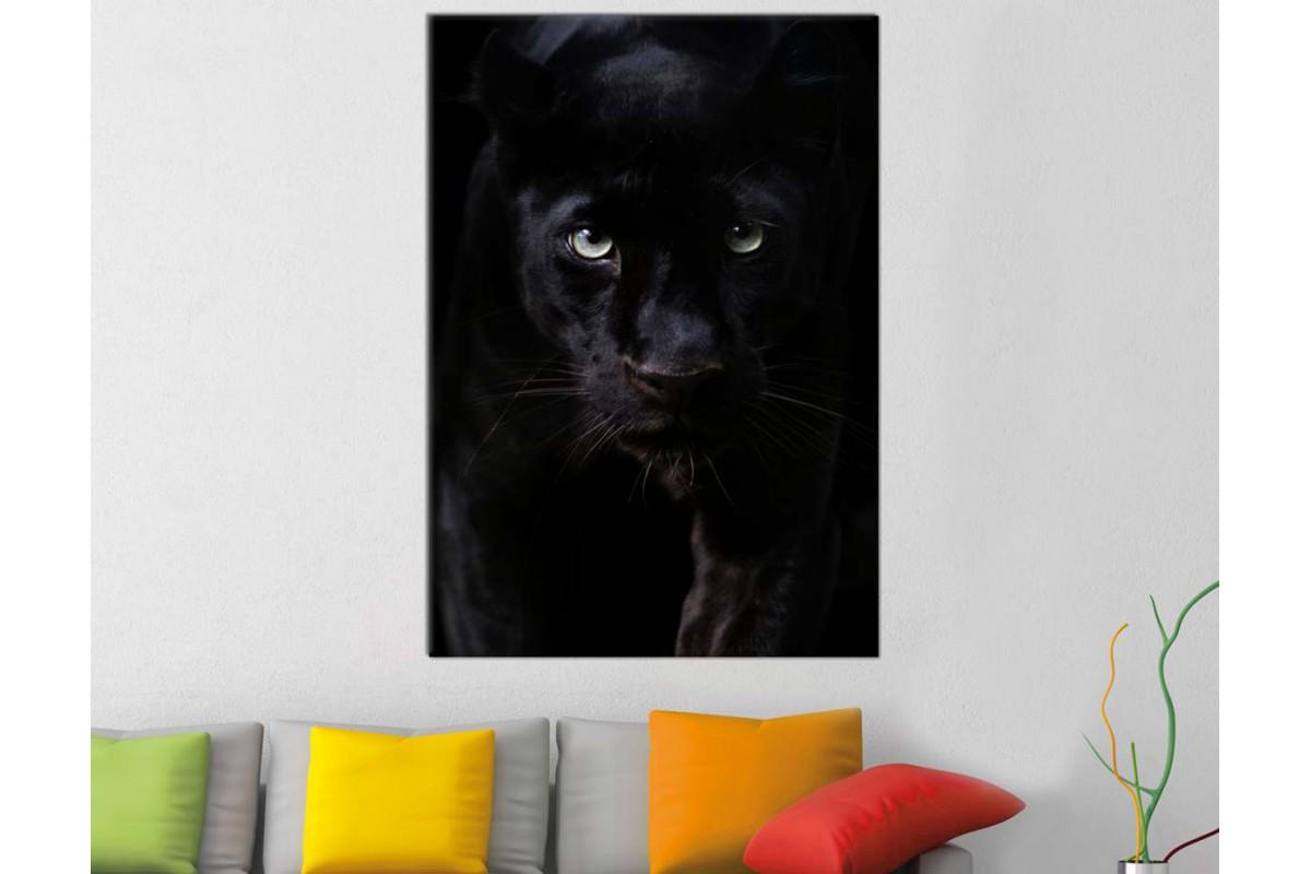 srkl1 - Siyah Leopar, Kara Panter, Siyah Panter Kanvas Tablo