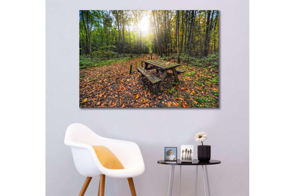 srkm51 - Sonbahar, Orman ve Piknik Masası dekoratif kanvas duvar tablosu