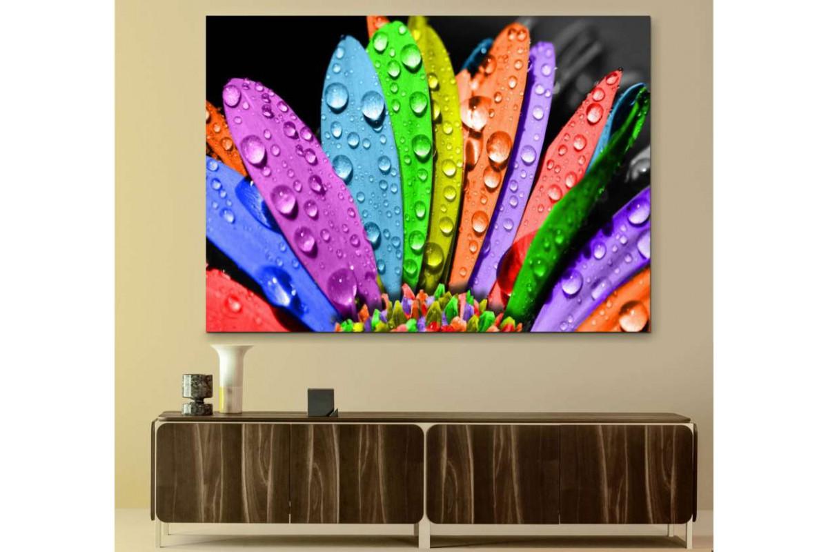 srks20 - Rengarenk Çiçekler ve Su Damlaları kanvas tablo
