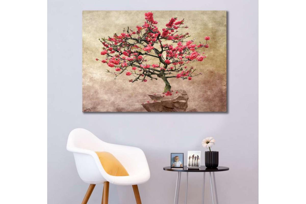 srks46 - Bonsai Ağacı - Dekoratif Kanvas Duvar Tabloları