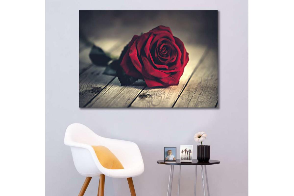 srks51 - Kırmızı Gül ve Ahşap Zemin dekoratif kanvas duvar tabloları