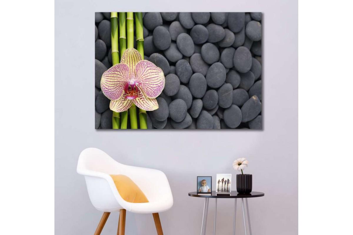 srsp1 - Bambu - Spa - Masaj Salonu - Zen Taşları - Orkideler Dekoratif Kanvas Tablo