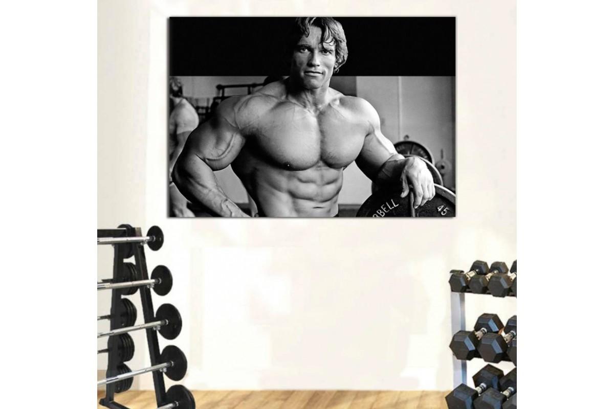 srss2 - Spor Salonu - Vücut Geliştirme - Body Building - Arnold Schwarzenegger Kanvas Tablo