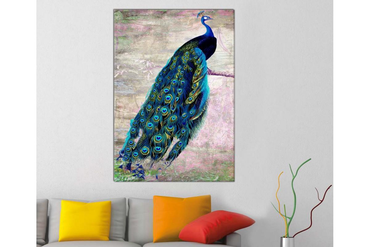 srts2 - Daldaki Tavus Kuşu Dekoratif Kanvas Duvar Tablosu
