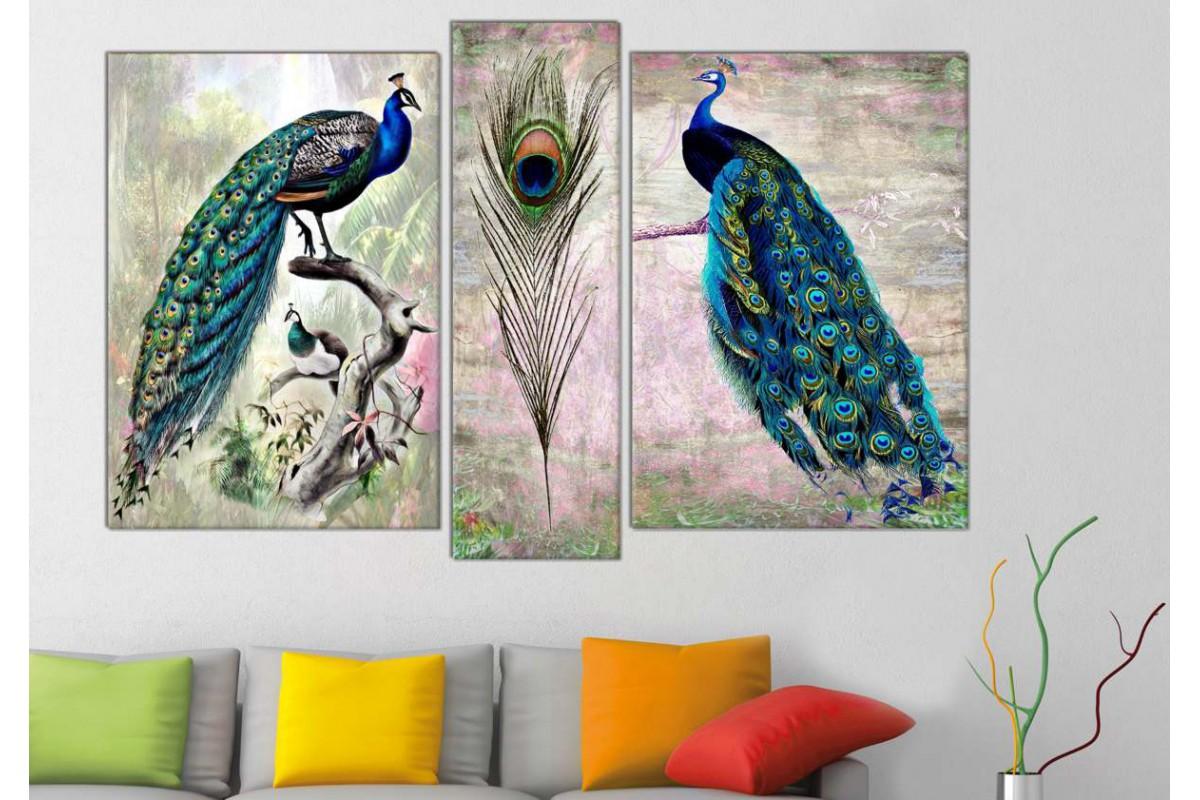 srts234_3p - Daldaki Tavus Kuşları ve Tavus Kuşu Tüyü Kanvas Tablo Seti- 2 adet 50x70 - 1 adet 25x80