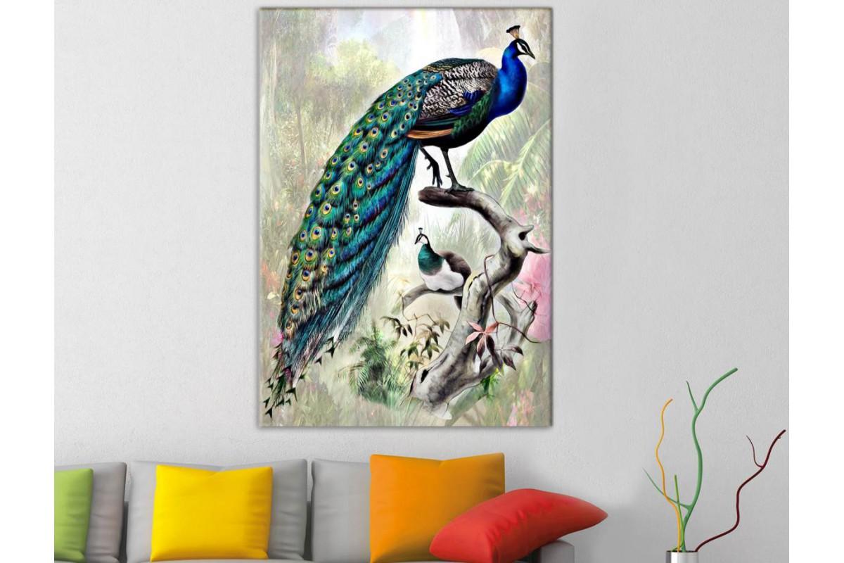 srts3 - Daldaki Tavus Kuşu Dekoratif Kanvas Duvar Tablosu
