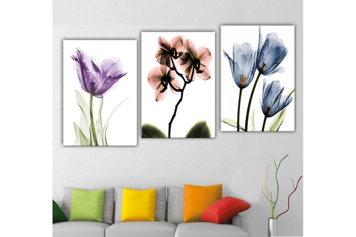 srf321_3p - Dekoratif Soyut Çiçekler, Röntgen Çiçekler Kanvas Tablo Seti
