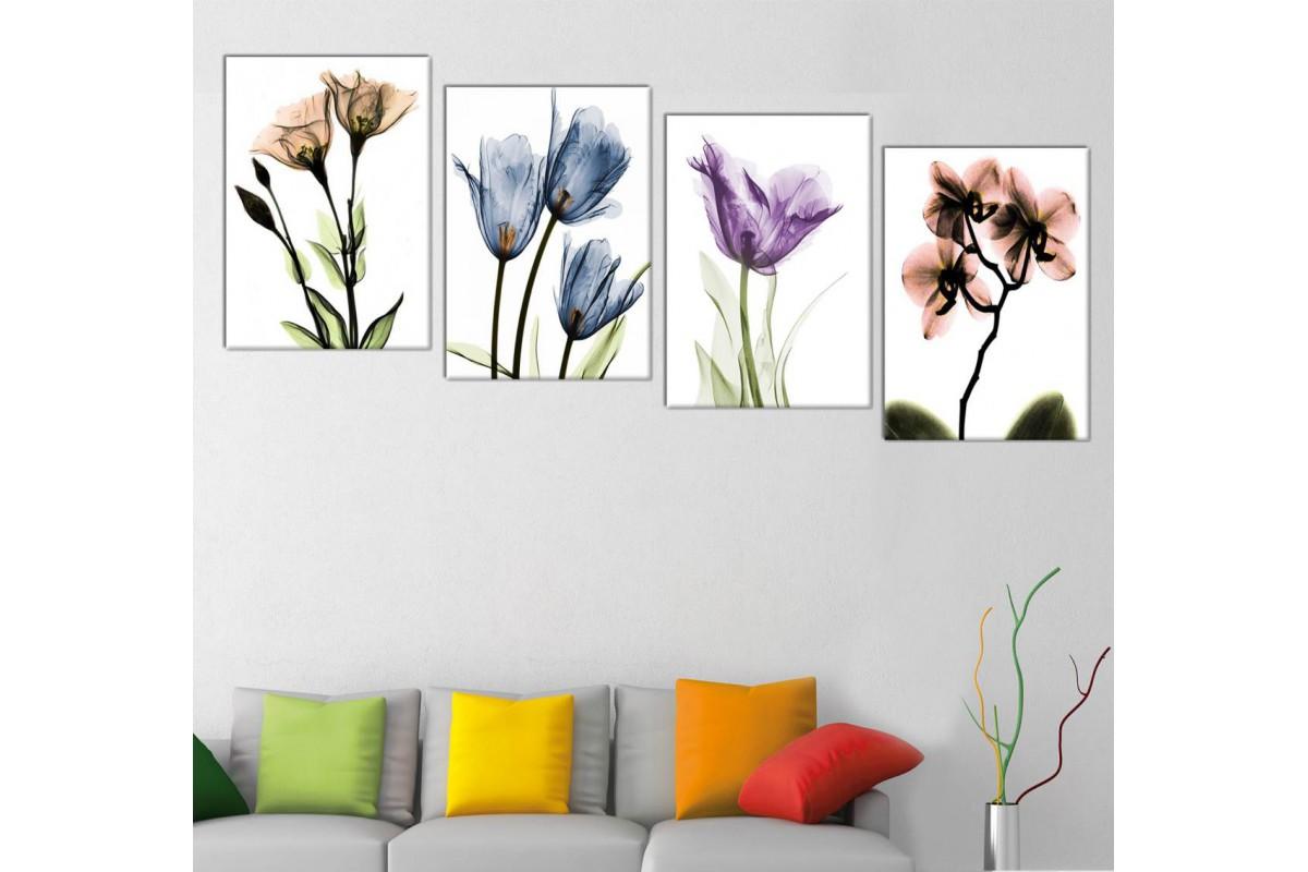 srf4321_4p - Dekoratif Soyut Çiçekler, Röntgen Çiçekler Kanvas Tablo Seti