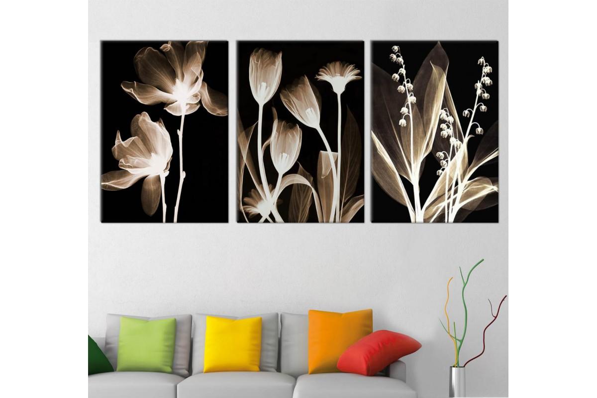 srwd123_3p - Siyah Zemin Üzerinde Dekoratif Çiçekler Kanvas Tablo Seti